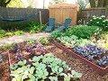 Shade Garden Designs | How to Design a Relaxing, Beautiful Shade Garden