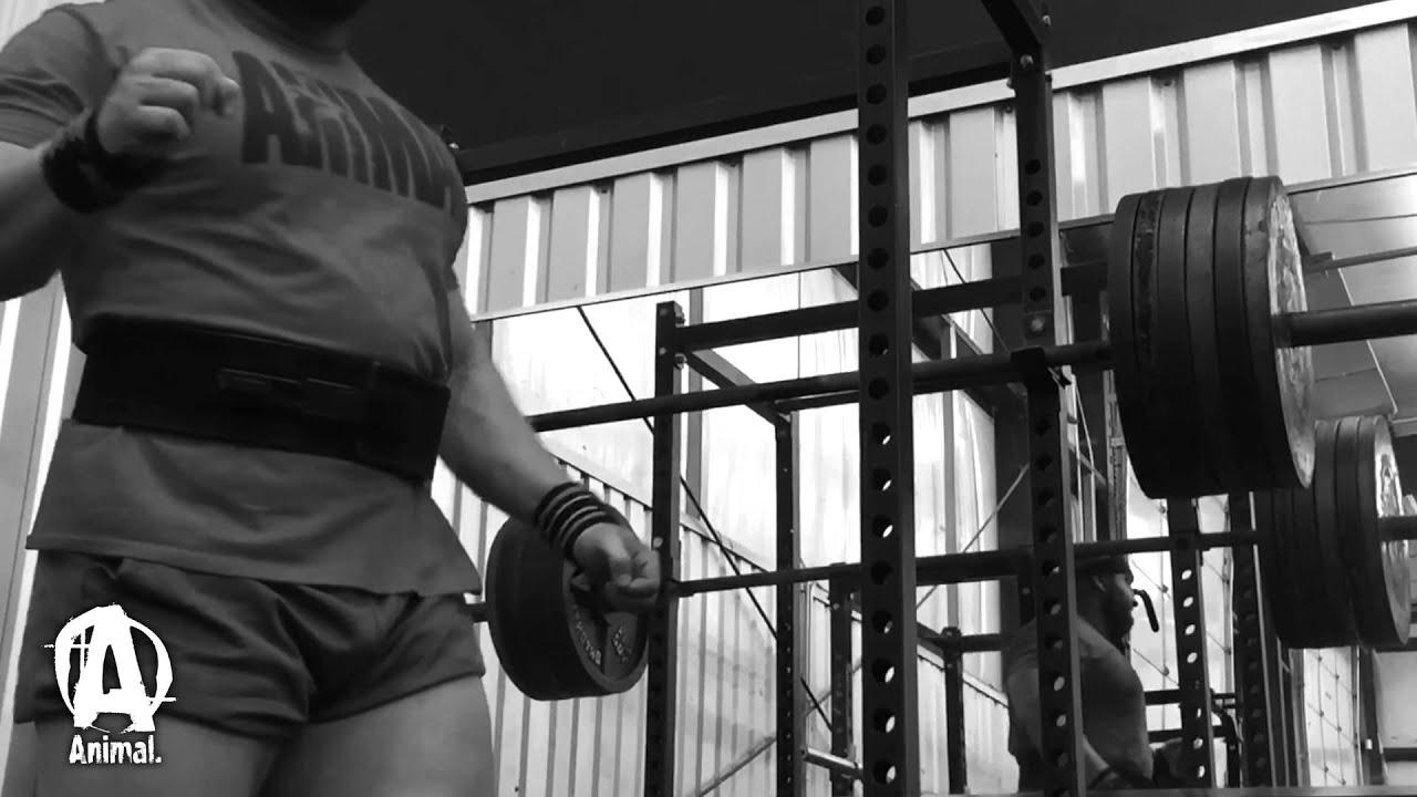 Download The Animal Underground: BJ Whitehead, Squat Strength Training