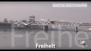 Söhne Mannheims - Freiheit [Clip]