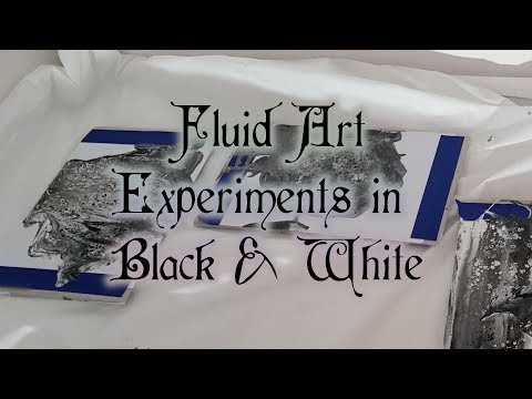 004 Fluid Art Experiments in Black and White
