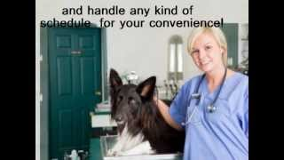 Emergency Vet Cleveland 24 Hour Pet Clinic - (216) 452-9107