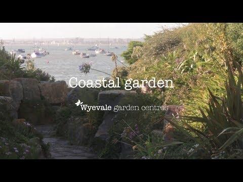 Seaside Garden Design – Coastal Garden Ideas