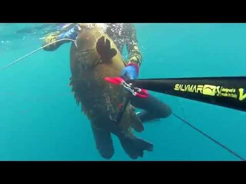 spearfishing trailer_ tenes sub (ALGERIA)