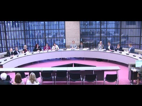 Rountable about Brexit in Dutch Parliament 19.04.18
