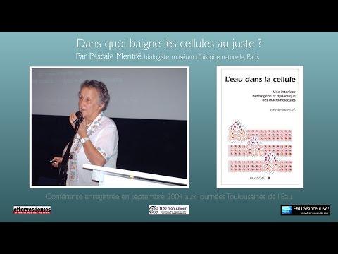 AUDIO - L'eau dans la cellule - Par Pascale Mentré, biologiste - sept 2004