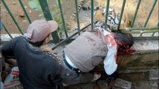 Tiger Attack-The Full Video & Behind the Attack!