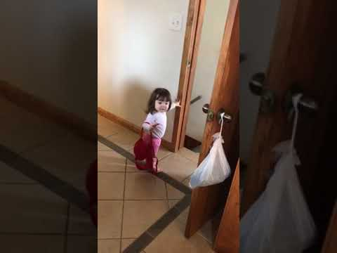 Baby mistakes bra for purse