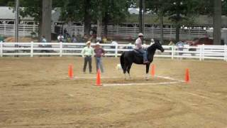 Tennessee Walking Horse Speed and Action