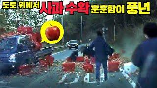 [맨인블박] 도로 위에 탐스런 사과()가 딱! 황당하고…
