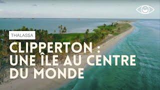 Clipperton, une île au centre du monde - Thalassa (reportage complet)