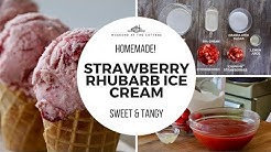 Amazing STRAWBERRY RHUBARB ICE CREAM!