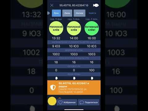 ТипТоп Рыбалка - прогноз клева. Лучшее мобильное приложение для рыбаков.