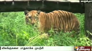Animals in Vandalur Zoo tackle's summer