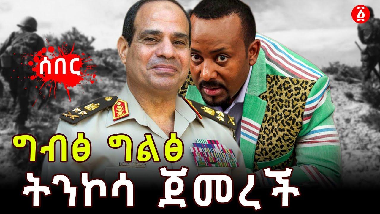 Egypt urges Ethiopian ambassador