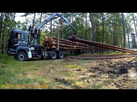 Ogromny Załadunek Drewna Transport Drewna - YouTube RS81
