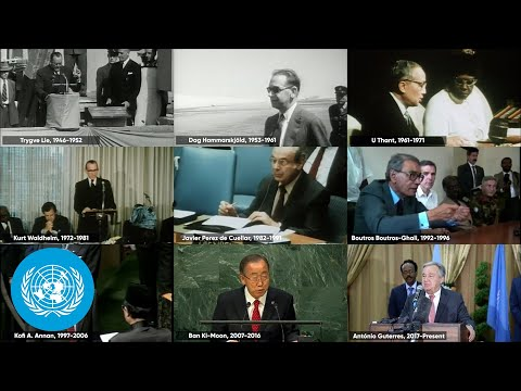 What is the role of the United Nations Secretary-General?