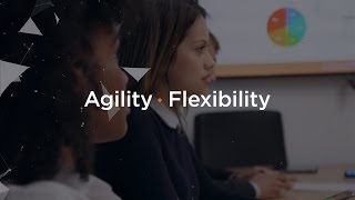 Agility and Flexibility at Scale