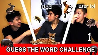 CHINESE AMERICANS TRY TO PLAY TABOO IN CHINESE BUT THEIR CHINESE SUCKS | Chinese Language Challenge