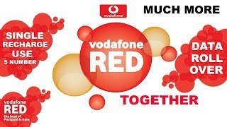 Vodafone RED Postpaid Together | RED Plan Details | Benefits and Uses