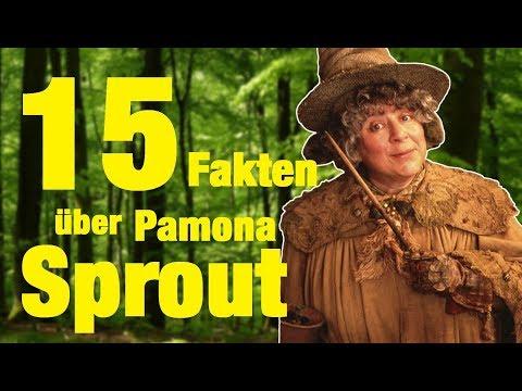 15 FAKTEN über Pamona SPROUT
