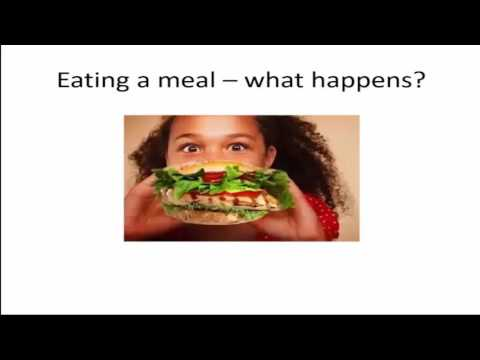 """PART 1: Sugar and Spice and all things """"nice"""" - Diabetes and insulin resistance"""