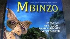 Halbzeitbericht zum Mbinzo-Projekt in der Demokratischen Republik Kongo