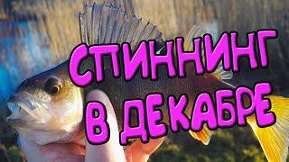 Спиннинг в декабре Рыбалка на окуня с берега Пришёл и наловил
