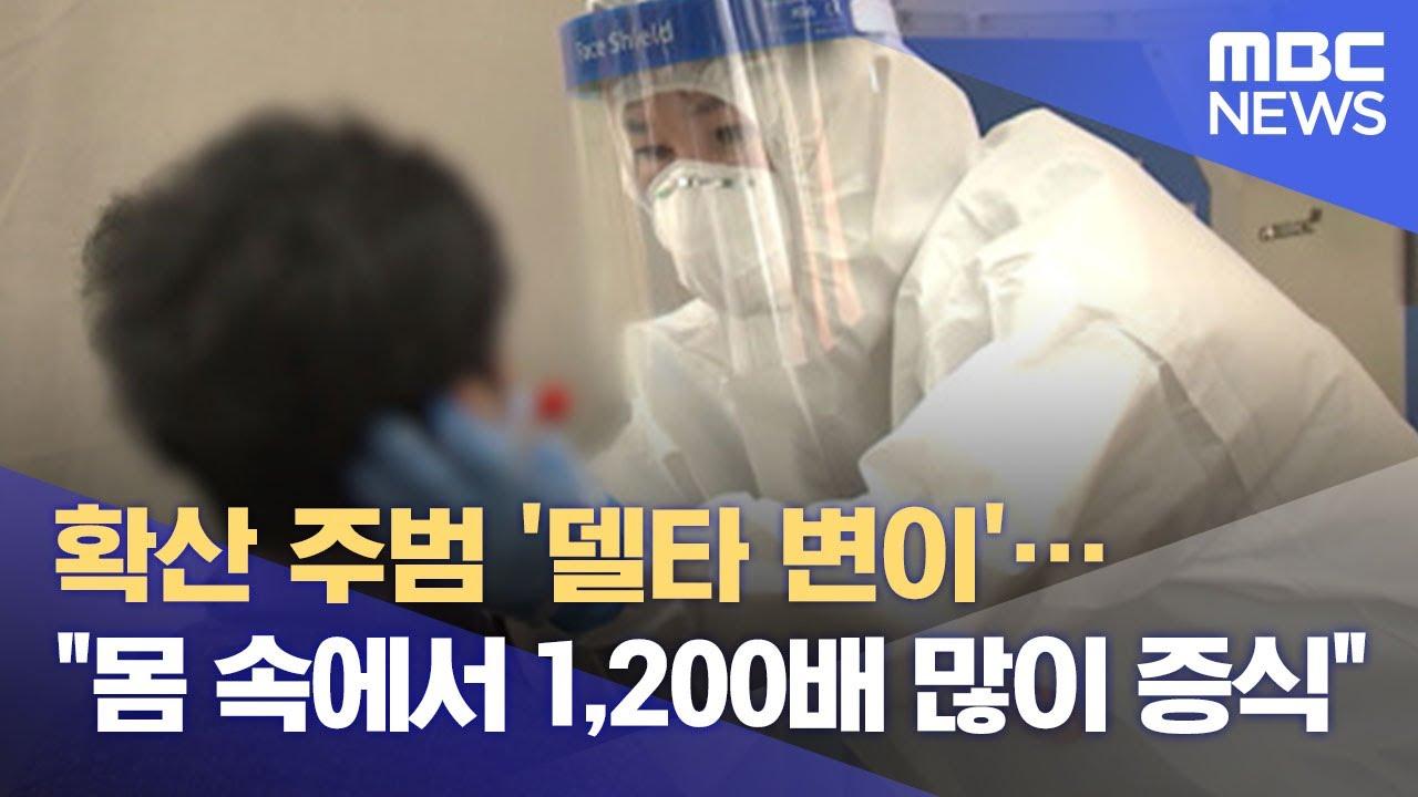 """확산 주범 '델타 변이'…""""몸 속에서 1,200배 많이 증식"""" (2021.07.22/뉴스데스크/MBC)"""