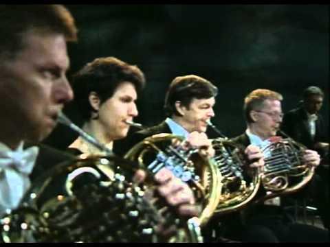 Sibelius Symphony No.1 (Salonen)