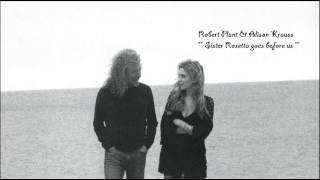 Robert Plant & Alison Krauss   Sister Rosetta goes before us