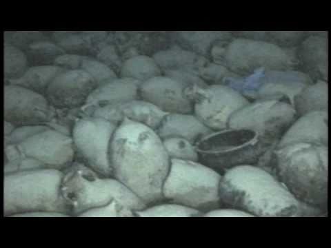 International waters - Nauticos Ancient Wreck