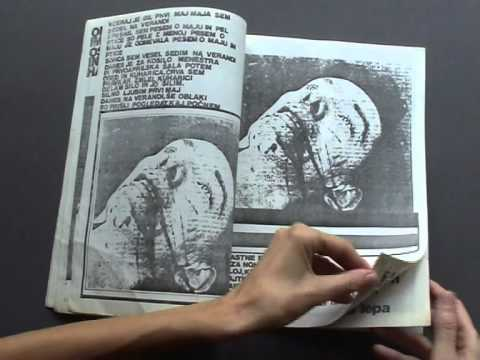 The Artist Book in Slovenia: the '80s to now