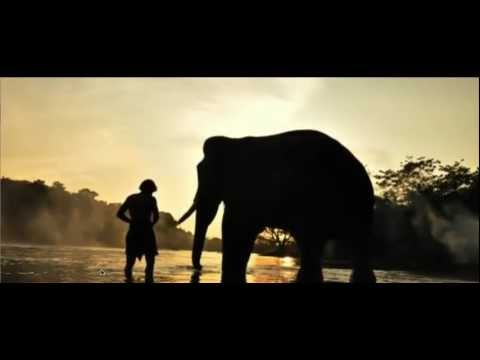 Soi Soi - Full Song - Kumki - english translation