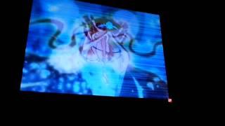 Winx - tutti i sogni miei- Winx in concert
