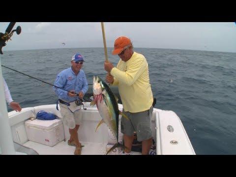 Bimini Pure Fishing