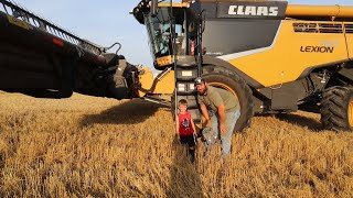 2019-wheat-harvest-day-5