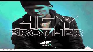 Avicii -hey Brother Instrumental