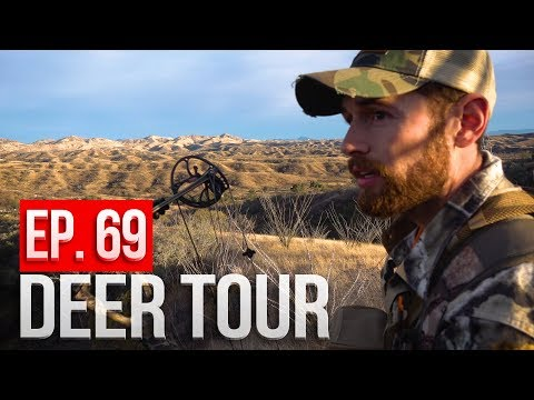 Spot And Stalk Coues Deer, Arizona Public Land Bowhunt! - DEER TOUR E69