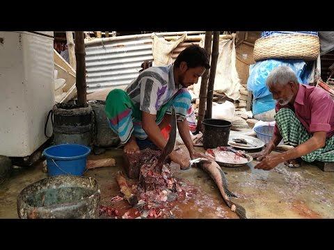 Big Great Snakehead Fish Cutting 2017 | Amazing Giant Mudfish Slice In Fish Market