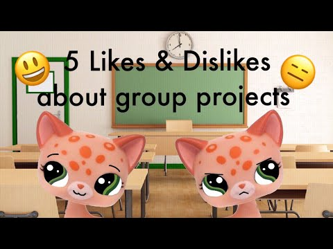 LPS: 5 Likes & Dislikes about group projects