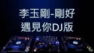 李玉剛-剛好遇見你DJ版