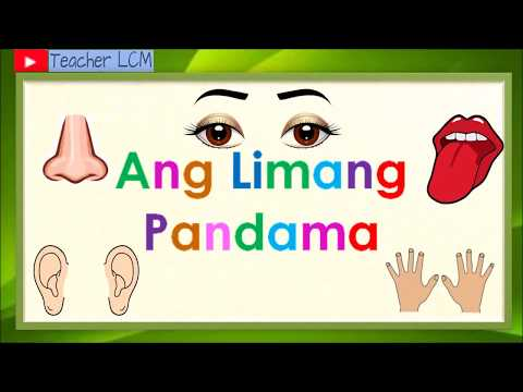 Ang Limang Pandama  5 Senses  Kindergarten