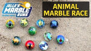 Animal Marble Race - Jelle's Marble Runs