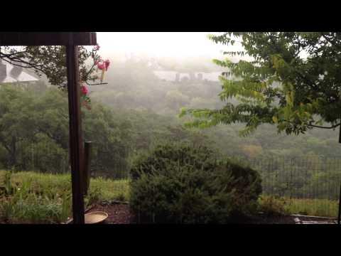 Rain in Austin, Texas!