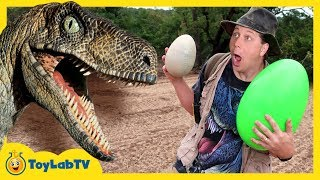 connectYoutube - Park Ranger Takes Dinosaur Egg! Raptors Chase Aaron on Surprise Eggs Toy Hunt, Family Fun Kids Toys