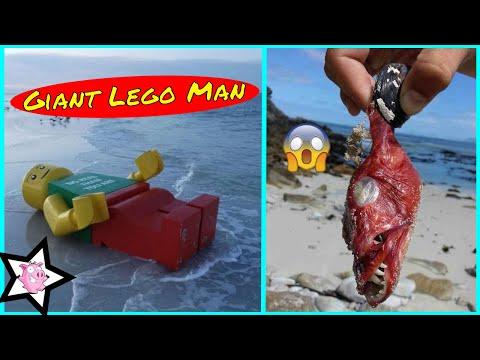 Weirdest Things Found On The Beach