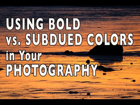 View Subdued Color Photography