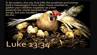 PLANNED Destruction of USA! ✡ Death of the Phoenix ✡ Framing AMERICA Mystery BABYLON