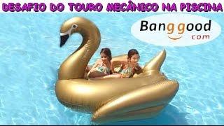 DESAFIO DO TOURO MECÂNICO NA PISCINA - CISNE GIGANTE DA BANGGOOD thumbnail