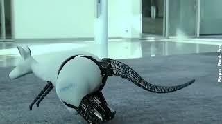 Роботы-животные уже реальность | InfoResist